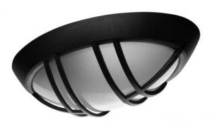Eliptic musta lasilla